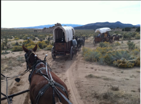 Wagon Train Dirt Road.png